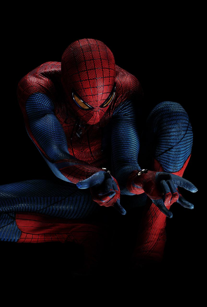 http://www.uruloki.org/felipeblog/images2011-1/20110214-the-amazing-spider-man-2.jpg