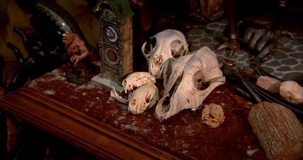 Un recuerdo a Ray Harryhausen y cráneos varios