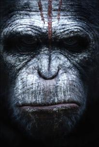 Otro mono