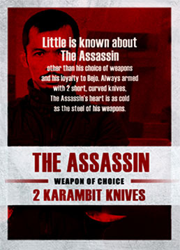 The Assassin (Cecep Arif Rahman)