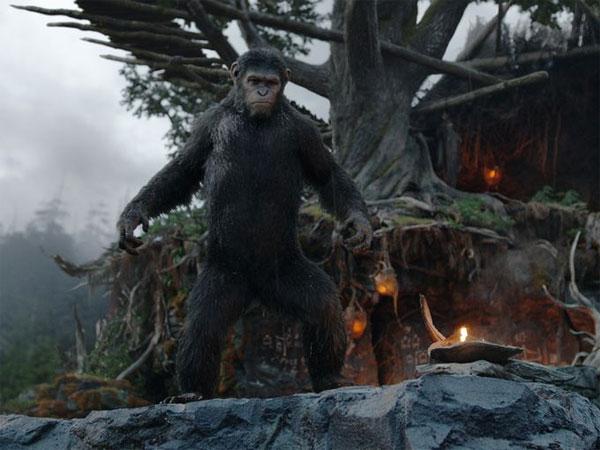 Nueva imagen de El amanecer del planeta de los simios