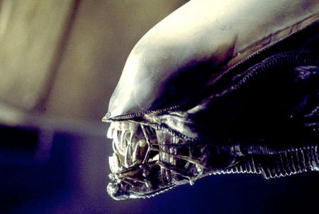 ¿Volverá Alien a la gran pantalla?