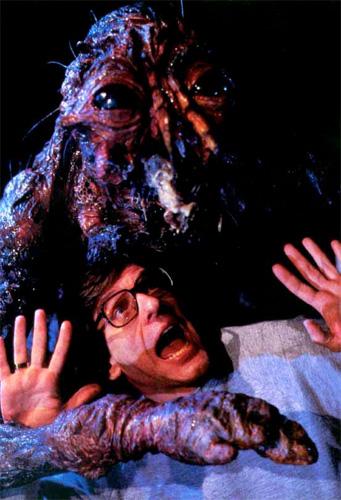 ¿La mosca y David Cronenberg inseparables?